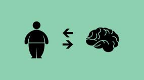 ارتباط چاقی و مغز
