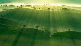 50 فینالیست برتر مسابقه عکاسی جوایز آگورا