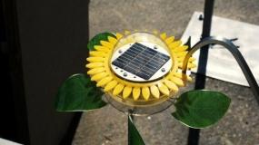 محصولات خورشیدی