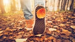 اقدامات مفید برای افزایش سلامتی در فصل پائیز