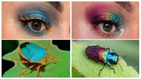آرایش و سایه چشم خلاقانه با الهام از حشرات رنگارنگ