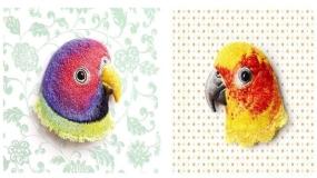هنر سوزن دوزی و خلق پرندگانی زیبا و شگفت انگیز