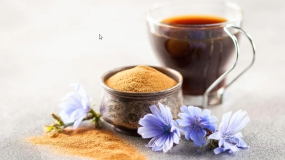 قهوه کاسنی چیست و چه خواصی دارد