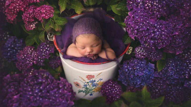 خلاقیت عکاسی ایرلندی در عکاسی کردن از نوزاد