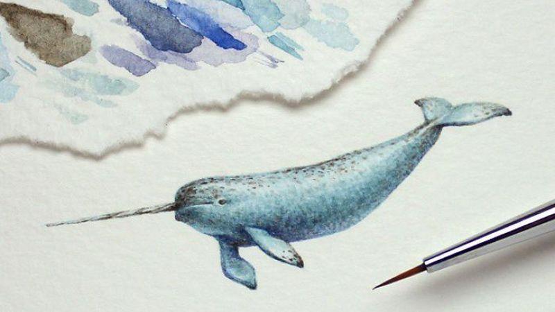 نقاشیهای آبرنگ مینیاتوری جولیا