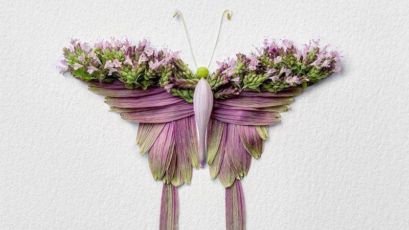 ساخت حشرات با استفاده از گلبرگهای گل توس هنرمند دو رگه کانادایی- ژاپنی