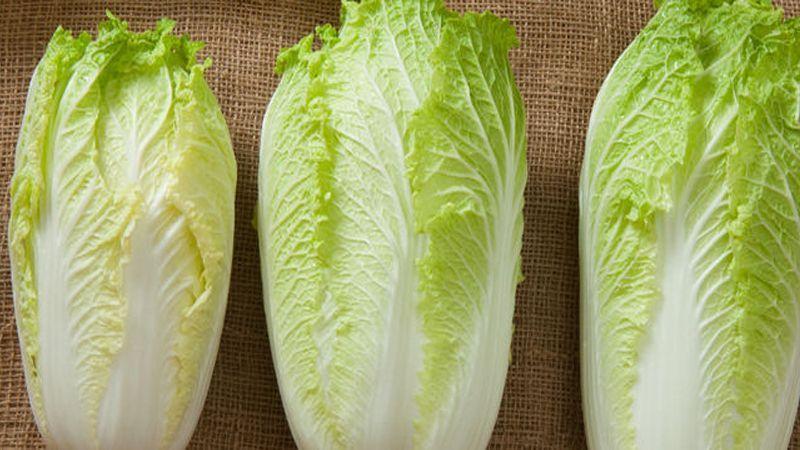 چگونه در برنامه غذایی روزانه از کلم چینی و خواص مفید آن بهره ببریم