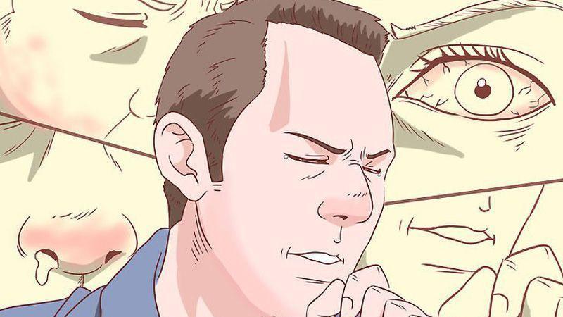 10 اقدام مؤثر که شما را از وقوع واکنشهای آلرژیک حفظ میکند