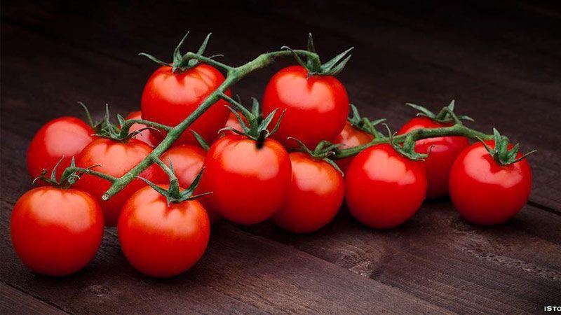خواص مصرف مداوم گوجه فرنگی