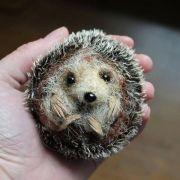 Felted-hedgehog