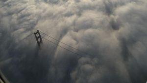 نیک اشتاینبرگ و عکاسی از مه