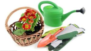 نسخه سبز باغبانی