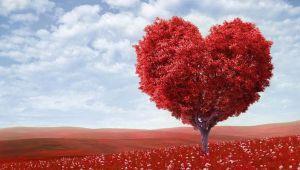 ساختن روابط عاطفی