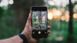 تصاویری تماشایی که با دوربین گوشی موبایل ثبت شده اند