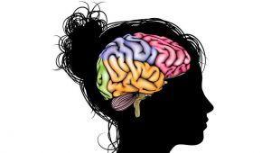 پارادوکس های مغزی