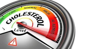 کاهش کلسترول خون