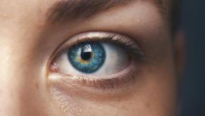 هفت خوراکی مفید برای سلامت چشم و بینایی