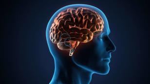 تومور مغزی و هیپوفیز
