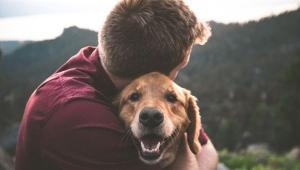 فواید نگهداری از حیوانات خانگی