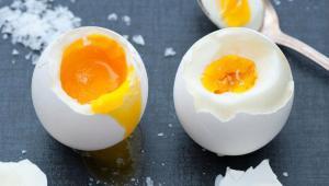 فواید و مضرات مصرف تخم مرغ